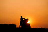 Silhouette of man loading hay bales