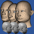 A computer graphics-based visualization method is being used for visualizing head-and-face shape variation among civilian populations.