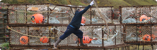 A commercial crab fisherman reaches for a swinging line while working on a stack of crab pots in Dutch Harbor, AK.