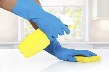 gloved hands with spray bottle and sponge