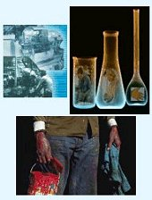 CDC - Organic Solvents - NIOSH Workplace Safety and Health Topic