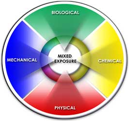 circular diagram showing mixed exposures: biological, mechanical, physical, chemical