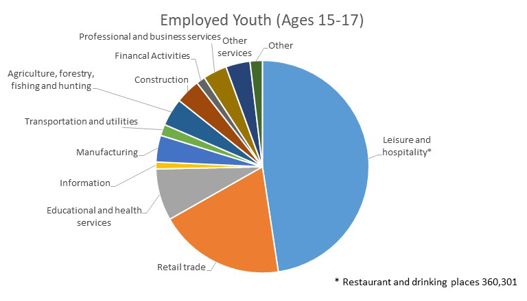 Cdc young worker safety and health selected charts on young this pie chart shows the distribution of employed youth ages 15 17 years by industry ccuart