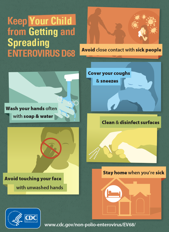 see text equivalent for Enterovirus D68 Infographic: Keep Your Child from Getting and Spreading Enterovirus D68