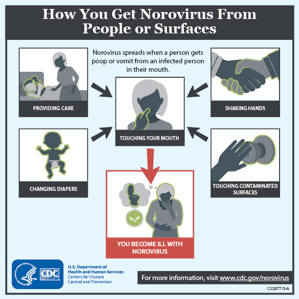 Image shows how you get norovirus from people or surfaces by touching