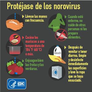 Norovirus infographic in Spanish - Protect yourself from Norovirus