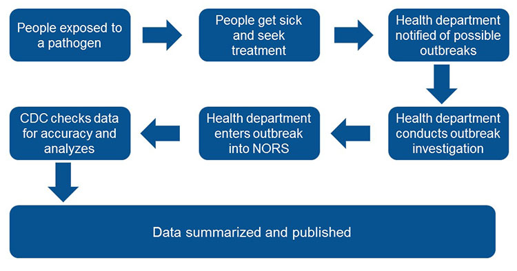 The flow of outbreak information to NORS graphic element