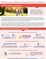 Cover: Obesity fact sheet