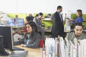 Photo: Employees in an office