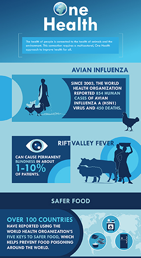 One Health Zoonotic Disease Prioritization Workshop infographic