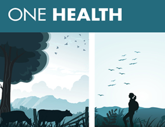 Graphic of One Health showing, connecting human, animal, and environmental health