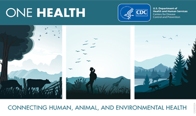 One Health Day Graphic, Connecting Human, Animal, and Environmental Health