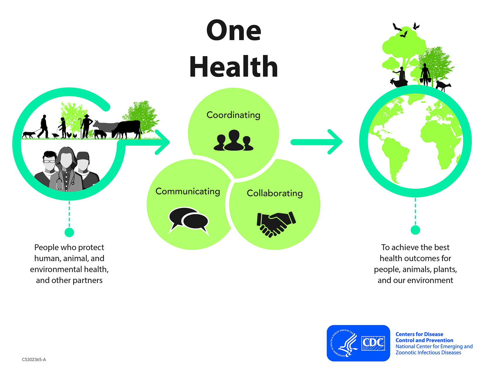 One Health Basics | One Health | CDC