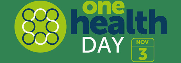 One Health Day Banner for November 3