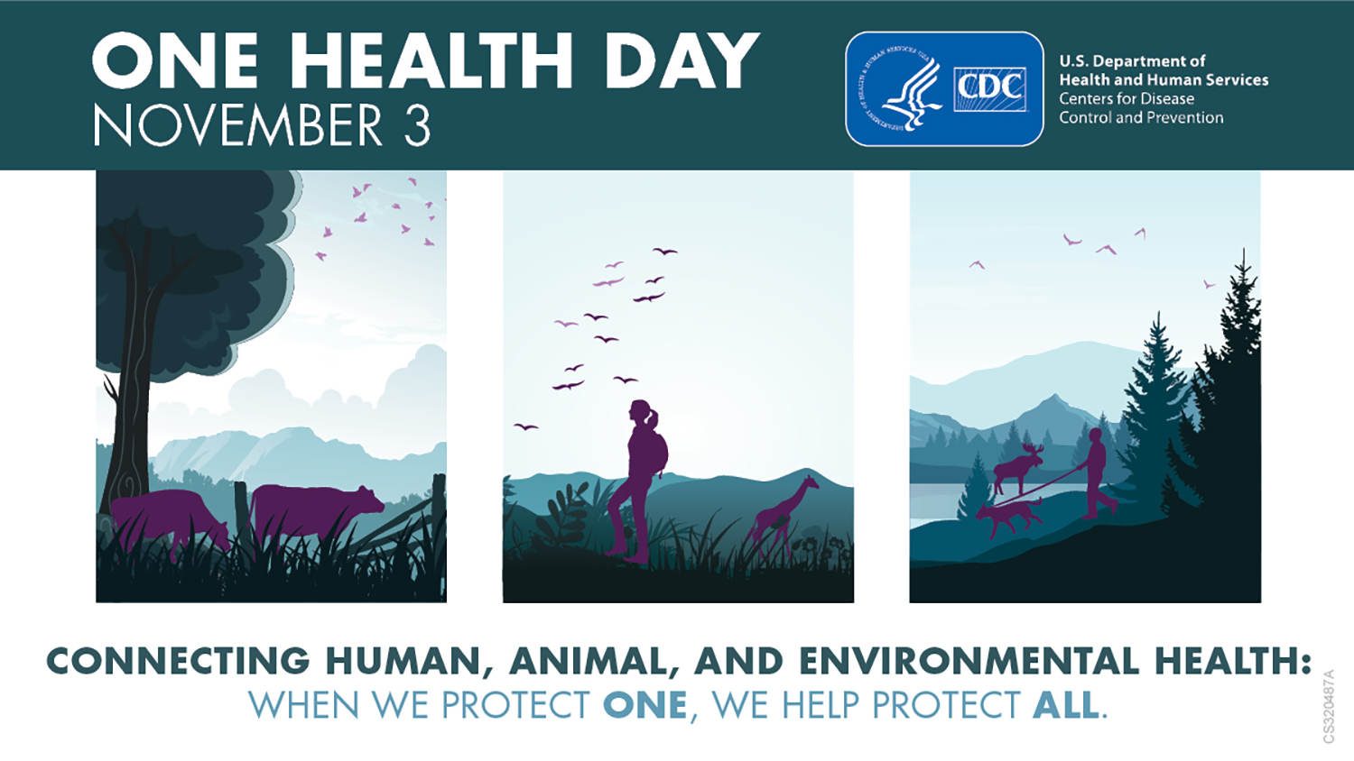 One Health Day November 3