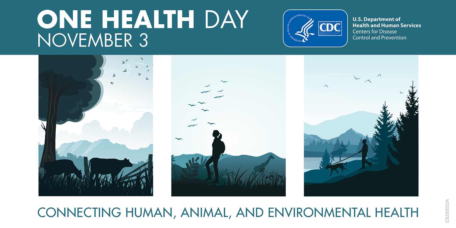 Twitter One Health Day Banner