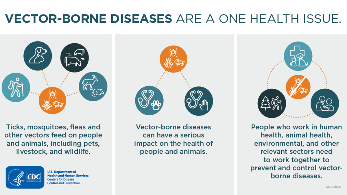 Vector-Borne Diseases Are A One Health Issue banner