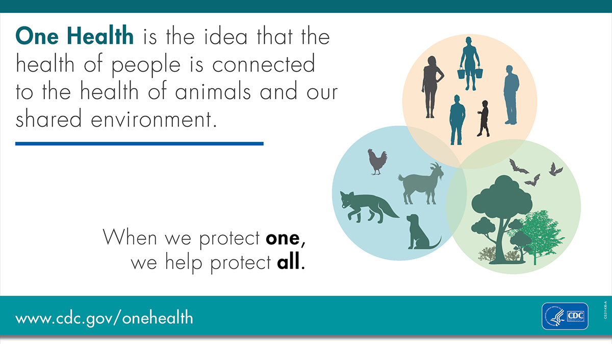 What Is One Health? banner for facebook