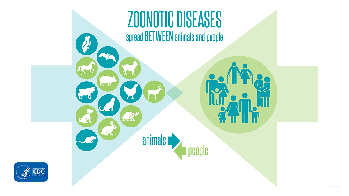 Zoonotic Diseases Spread Between Animals and People banner for twitter