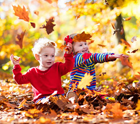 Children playing in a pile of leaves
