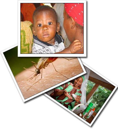A stack of photos showing a mosquito, a woman taking precautions to prevent malaria, and a young boy who lives in an malaria endemic area.
