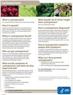 Cyclosporiasis Fact Sheet