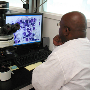 A CDC microbiologist reviewing a  telediagnosis request.