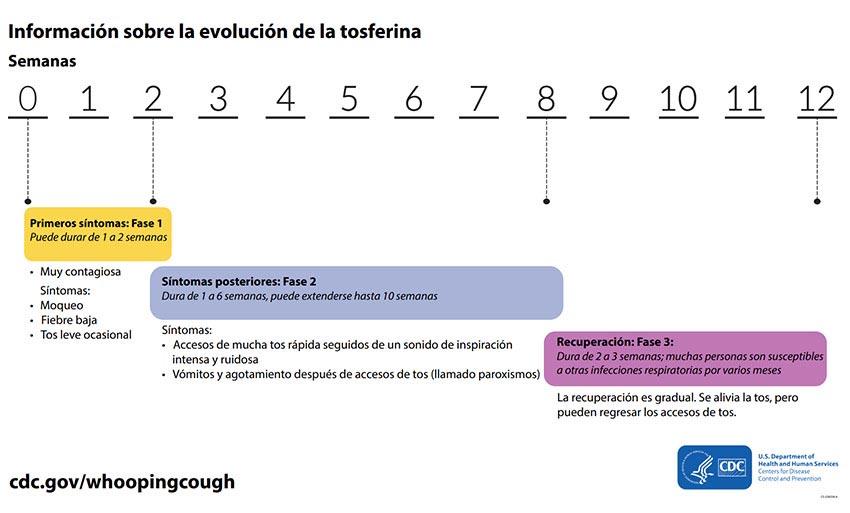 Evolución de la tos ferina