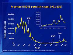 This graph illustrates the number of pertussis cases reported to CDC from 1922 to 2015. Following the introduction of pertussis vaccines in the 1940s when case counts frequently exceeded 100,000 cases per year, reports declined dramatically to fewer than 10,000 by 1965. During the 1980s pertussis reports began increasing gradually, and by 2015 more than 20,000 cases were reported nationwide