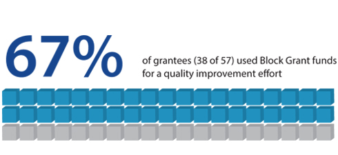 67% of grantees (38 of 57) used Block Grant funds for a quality improvement effort.