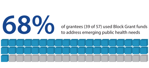 68% of grantees (39 of 57) used Block Grant funds to address emerging public health needs.