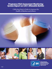 Snapshot Report cover, images of pregnant women.
