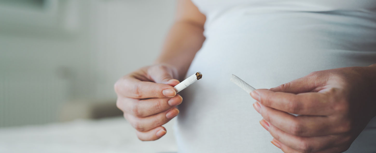 Pregnant women breaking a cigarette in half