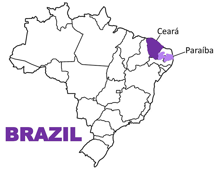 Brazil with two states highlighted