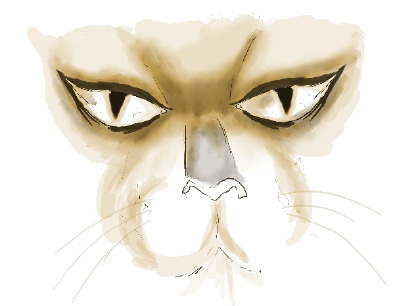 Illustration of wild cat face and eyes