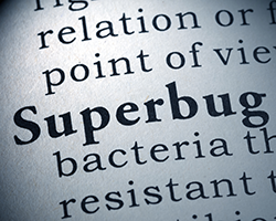 Photo: definition of superbug