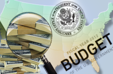 Tutorial on federal budget and financial management