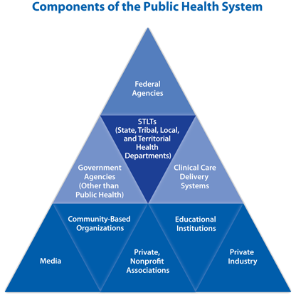 "As depicted in the pyramid, United States' governmental public health system represents a complex and broad range of federal, state, and local health agencies, laboratories and hospitals, as well as nongovernmental public and private agencies, voluntary organizations, and individuals. Federal agencies are represented at the top and health departments at the center of the pyramid because of their primary leadership responsibilities for developing a broad knowledge base so that policy is driven by long-range issues, ensuring that the public interest is served, and achieving a balance between individual liberties and equitable actions for the good of the community. The pyramid represents components of the public health system that are likely to receive capacity building assistance through the ""Building Capacity of the Public Health System to Improve Population Health through National, Nonprofit Organizations"" grant."