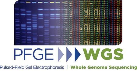 Pulsed-Field Gel Electrophoreses versus Whole Genome Sequencing