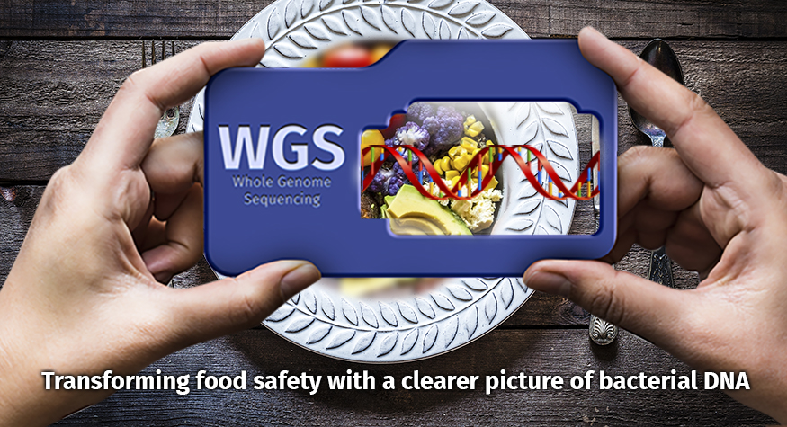 Holding WGS viewer over a plate of food. Transforming food safety with a clearer picture of bacterial DNA
