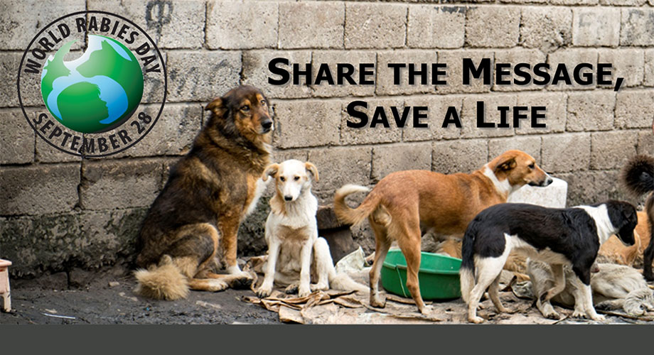 2018 World Rabies Day Banner: Share the Message, Save a Life!