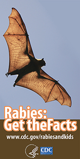 Rabies infromation for kids: Get the Facts. Visit www.cdc.gov/rabiesandkids for more information.