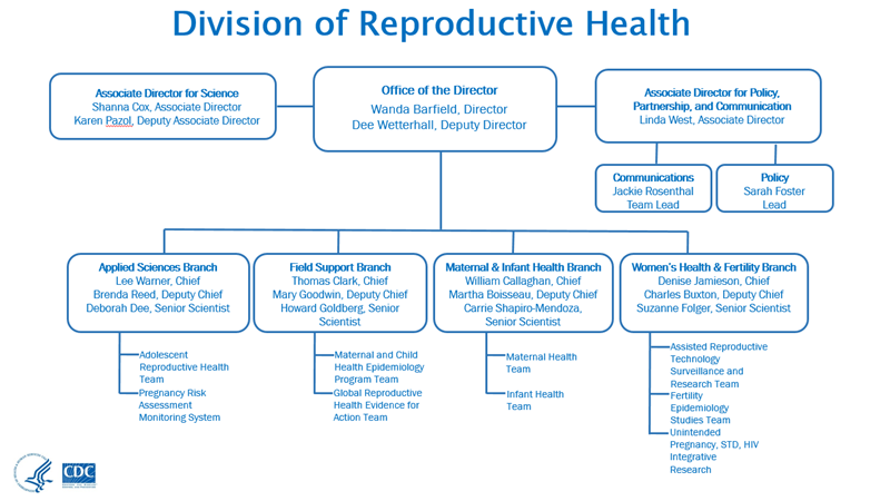 Organizational chart about us reproductive health cdc drh organizational chart 2015 fandeluxe Image collections