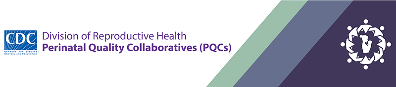 Perinatal quality collaboratives perinatal reproductive health cdc developing and sustaining perinatal quality collaboratives a resource guide for states pdf 566kb fandeluxe Image collections