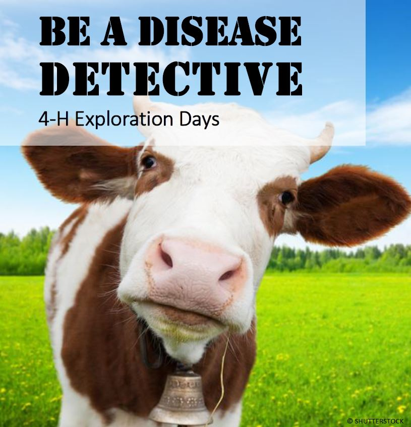 Be a Disease Detective 4-H Exploration Days