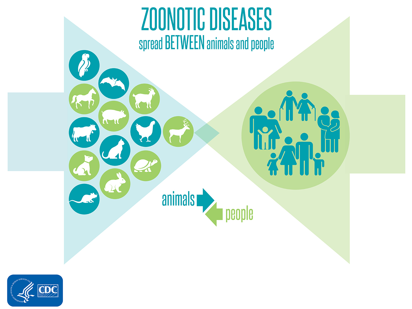 zoonotic diseases spread between animals and people