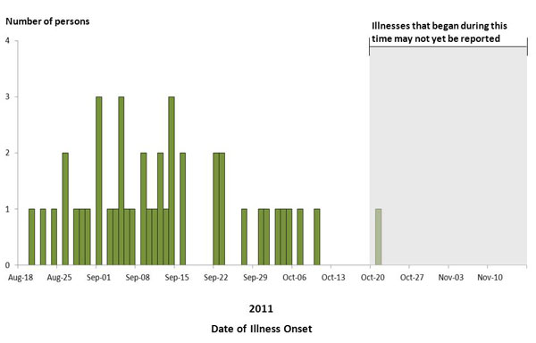 Final Epi Curve: Persons infected with the outbreak strain of Salmonella Enteritidis, by date of illness onset