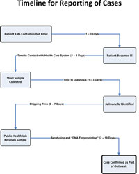 CDC - Salmonella Reporting Timeline