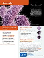 Outbreaks Involving Salmonella | CDC