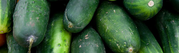 Salmonella Poona link to imported cucumbers
